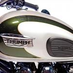 Tony Hawk Triumph T100 110th Anniversary Edition