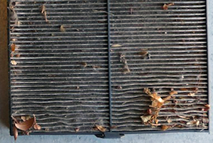 A clean cabin filter will make sure your car stays warm.